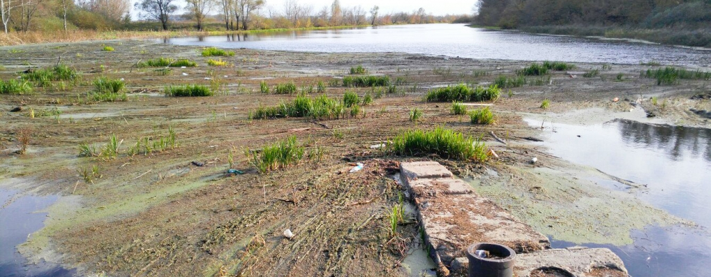 """Река Сейм на участке """"пешеходного моста"""". Речная растительность наступает..."""
