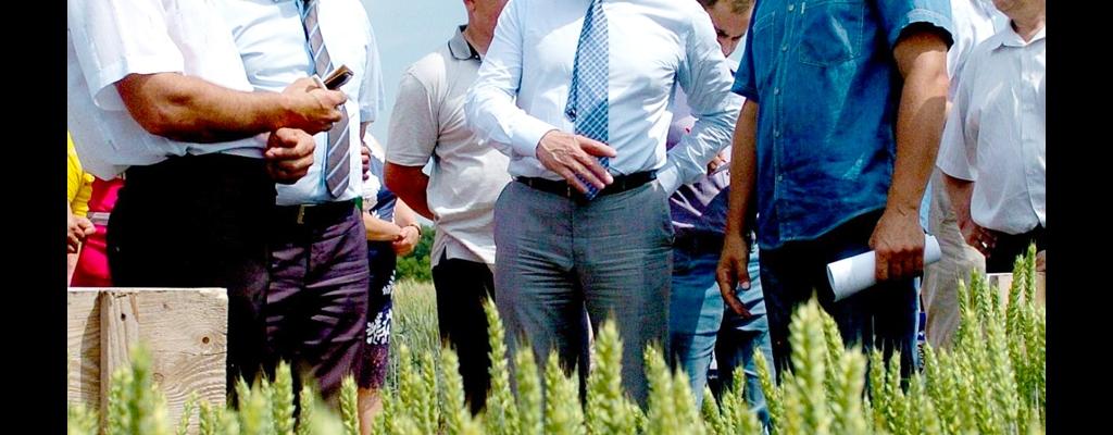 Семинар-совещание по вопросам семеноводства и сортовой политики состоялся с участием и.о. губернатора Курской области Александра Зубарева
